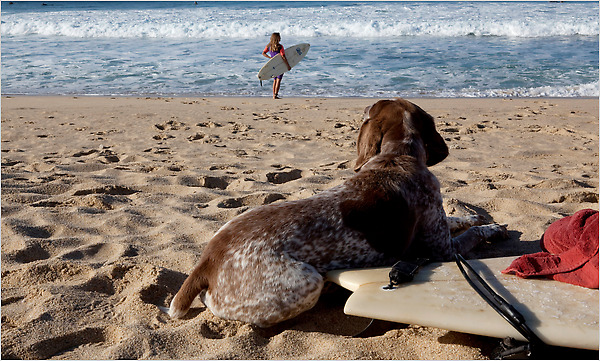In Todos Santos, Mexico, on the Baja Peninsula, surfers keep their favorite spots to themselves.