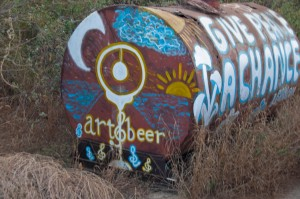 art-and-beer-todos-santos-85862
